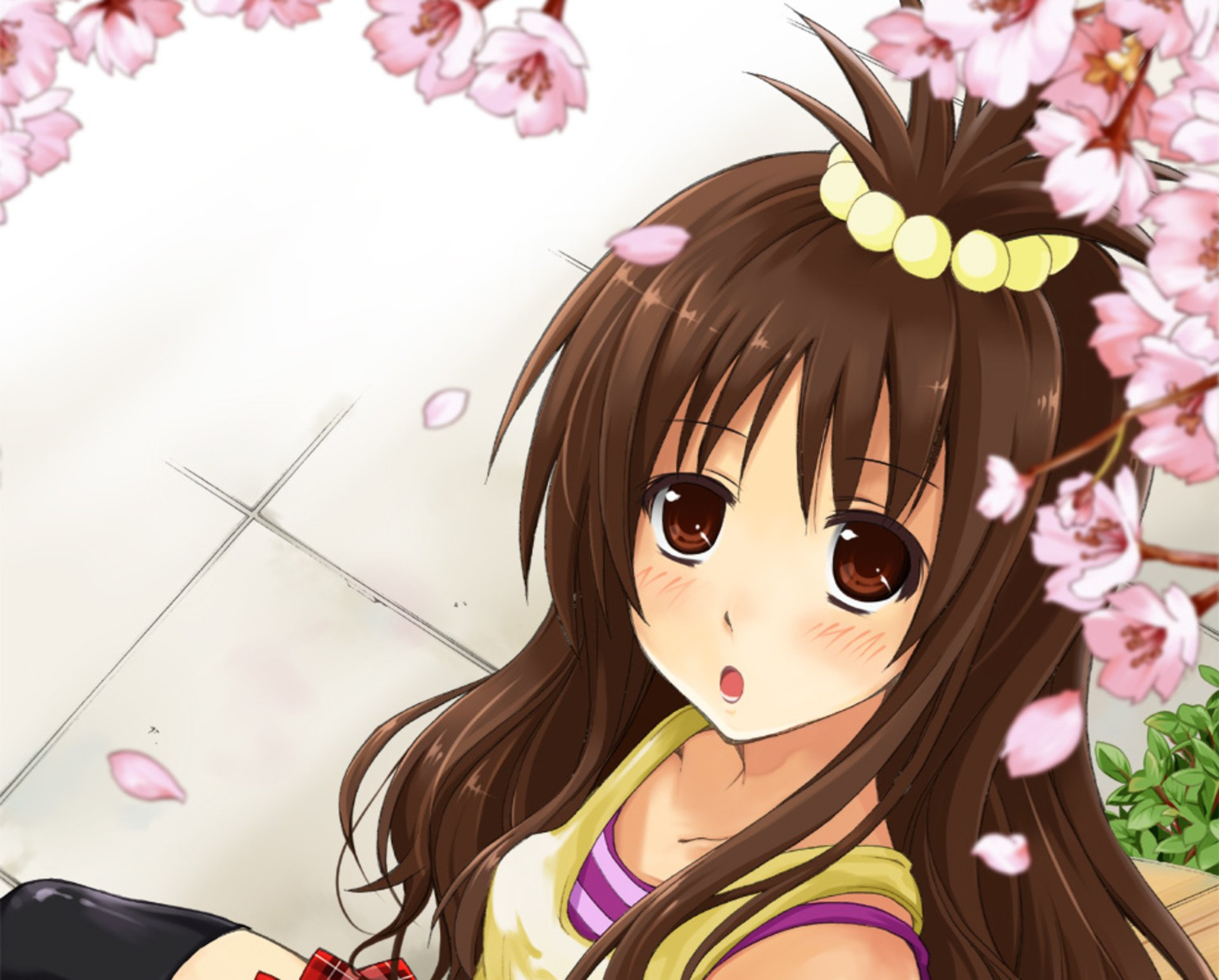 Wallpapers ID:1008556