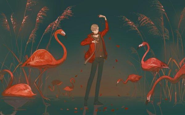 Anime Original Flamingo Short Hair Brown Hair Scarf Bird HD Wallpaper | Background Image