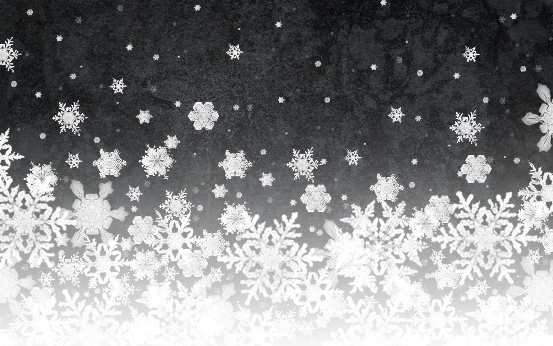 Snowflake Full HD Wallpaper and Background | 1920x1200 | ID:101296