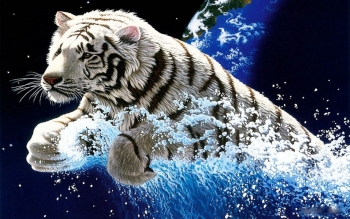 Animal - White Tiger Wallpapers and Backgrounds ID : 101706