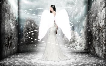 Fantasy - Angel Wallpapers and Backgrounds ID : 102366