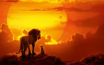 252 4k Ultra Hd Lion Wallpapers Background Images Wallpaper Abyss