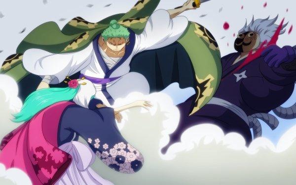 Anime One Piece Roronoa Zoro Kozuki Hiyori HD Wallpaper   Background Image