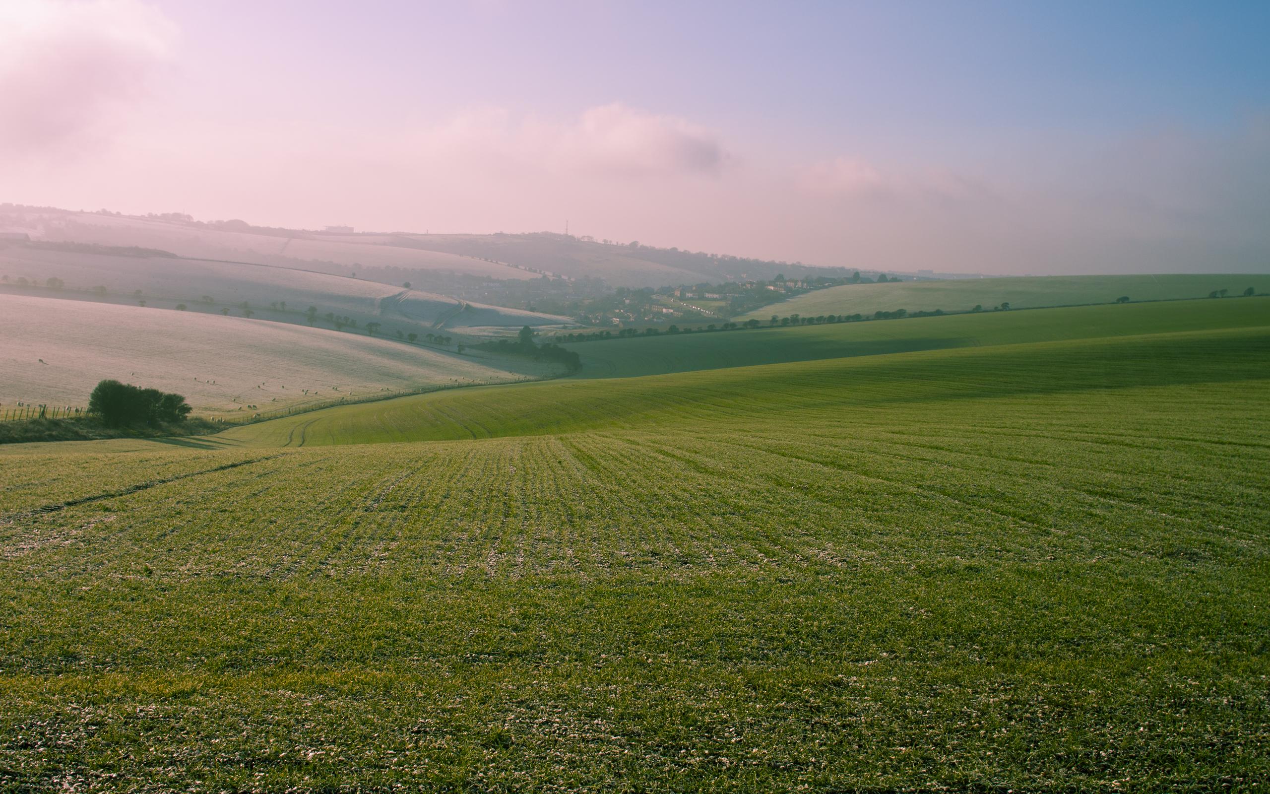 field 2560x1600 2616 - photo #10