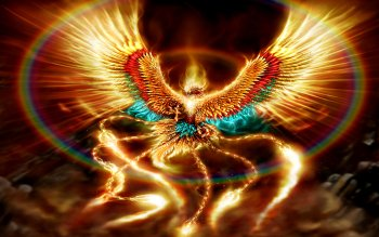 Фэнтези - Phoenix Wallpapers and Backgrounds ID : 104284