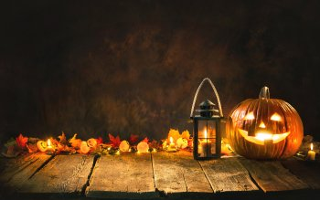 788 Halloween Hd Wallpapers Background Images Wallpaper