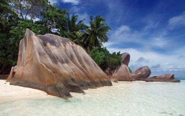 Tierra/Naturaleza Playa Rock Palmera Árbol Seychelles Fondo de pantalla HD | Fondo de Escritorio