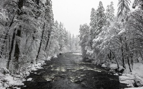 Earth Winter Yosemite National Park River Nature Snow HD Wallpaper | Background Image