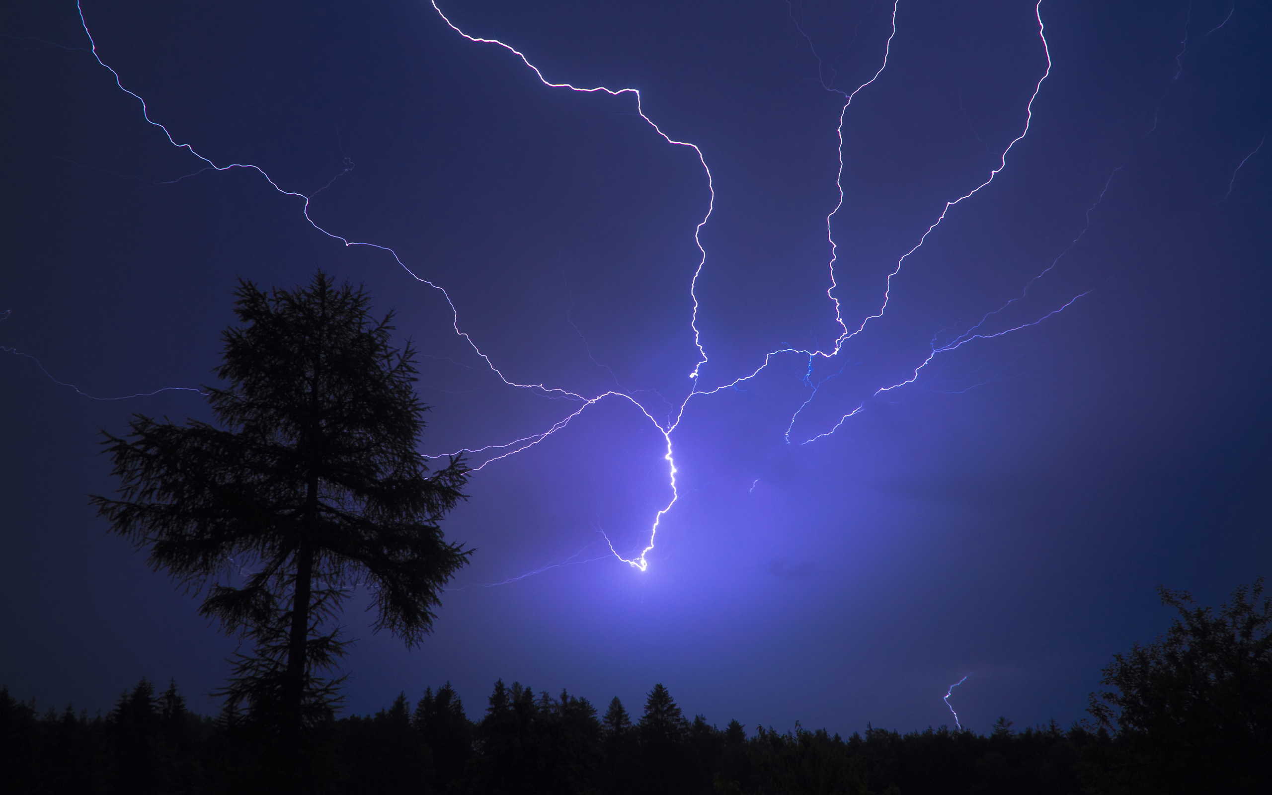 Photography - Lightning  Forest Electrical Earth Wallpaper