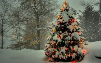 Holiday - Christmas Wallpapers and Backgrounds ID : 105756