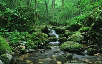Earth - Stream Wallpapers and Backgrounds ID : 105806