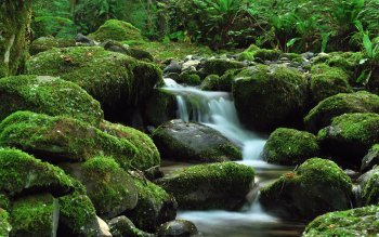 Earth - Stream Wallpapers and Backgrounds ID : 105868