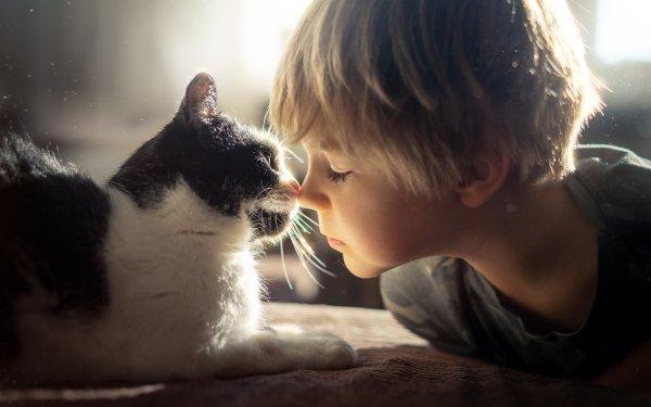 Photography Child Little Boy Cat Pet Love HD Wallpaper | Background Image