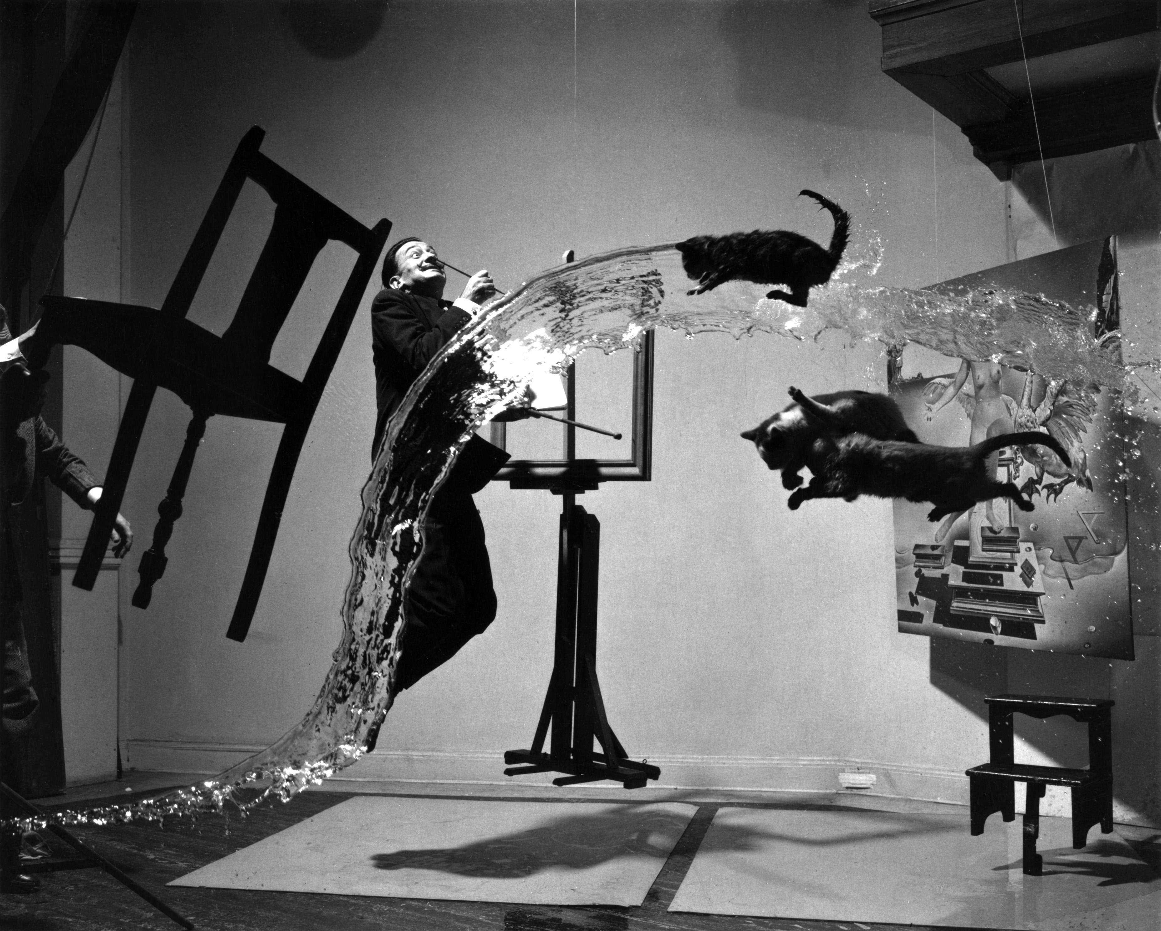 Artistic - Black & White  Cat Salvador Dali Wallpaper