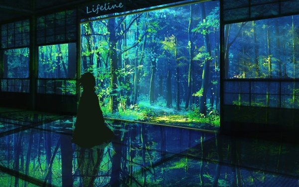 Anime Demon Slayer: Kimetsu no Yaiba Forest HD Wallpaper | Background Image