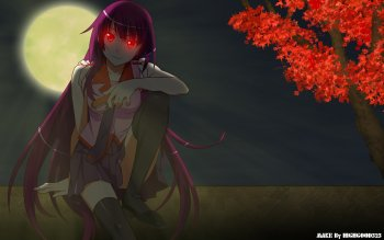 Anime - Bakemonogatari Wallpapers and Backgrounds ID : 110838