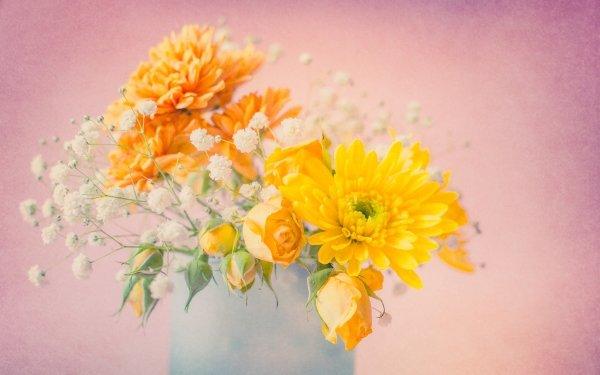 Man Made Flower Rose Bouquet Chrysanthemum Baby's-Breath HD Wallpaper   Background Image