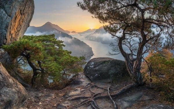 Earth Tree Root Roots Sun Cloud Mountain South Korea HD Wallpaper | Background Image