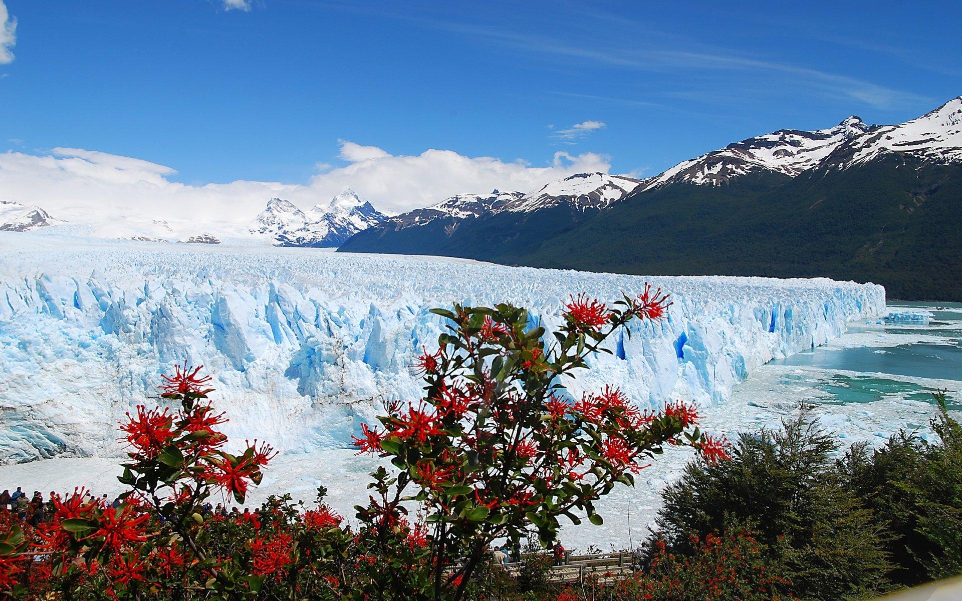 Earth - Glacier  Wallpaper
