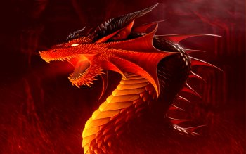 Fantasy - Dragon Wallpapers and Backgrounds ID : 114006