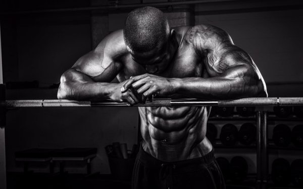 Sports Bodybuilding Muscle Black & White HD Wallpaper | Background Image