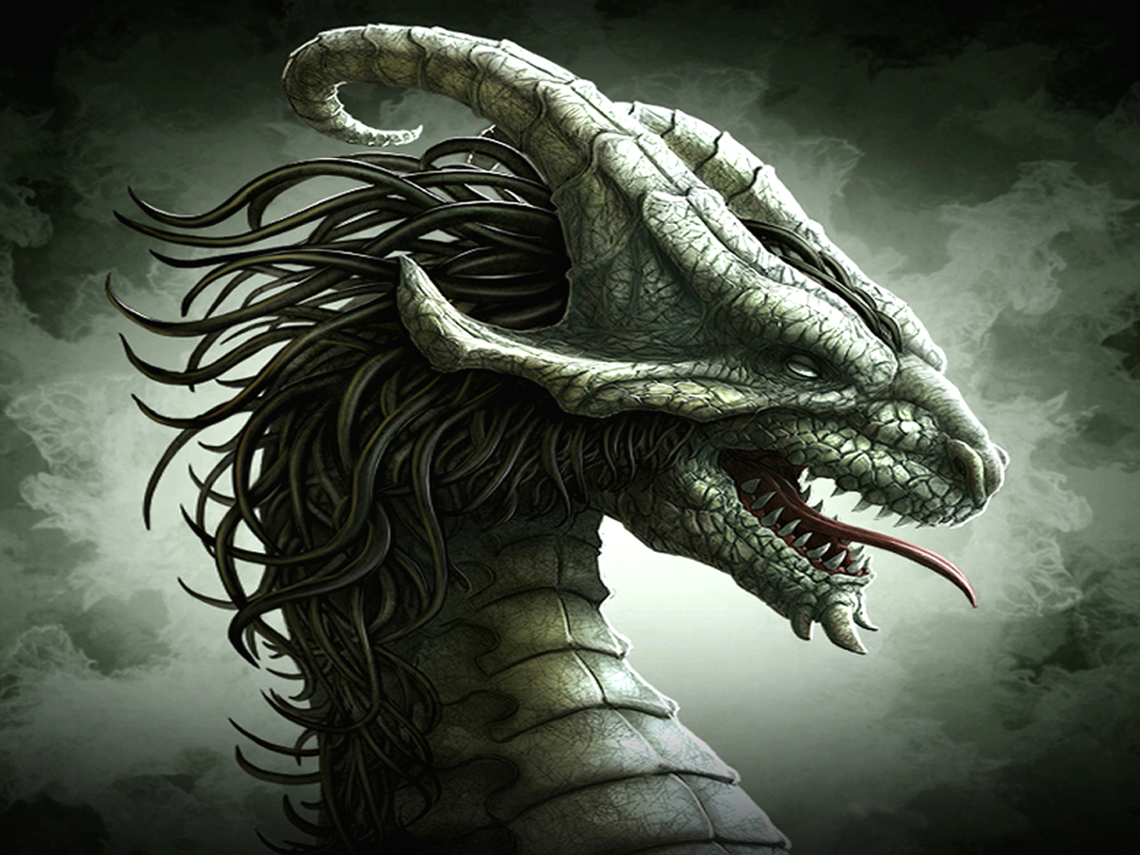 Supreme silver wallpaper and background image 1600x1200 id115464 fantasy dragon wallpaper voltagebd Image collections