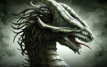 Fantasy - Drachen Wallpapers and Backgrounds ID : 115464