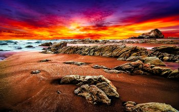 Earth - Beach Wallpapers and Backgrounds ID : 115728
