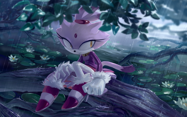 Video Game Sonic the Hedgehog Sonic Blaze the Cat HD Wallpaper   Background Image
