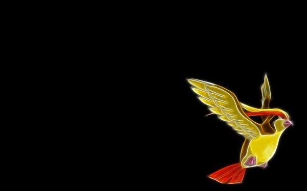 Anime Pokémon Pidgeot Flying Pokémon HD Wallpaper | Background Image