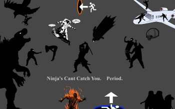 Humor - Ninja Wallpapers and Backgrounds ID : 121024