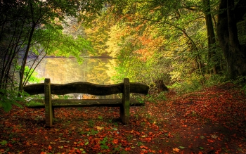 Fotografie - Herfst Wallpapers and Backgrounds ID : 122704
