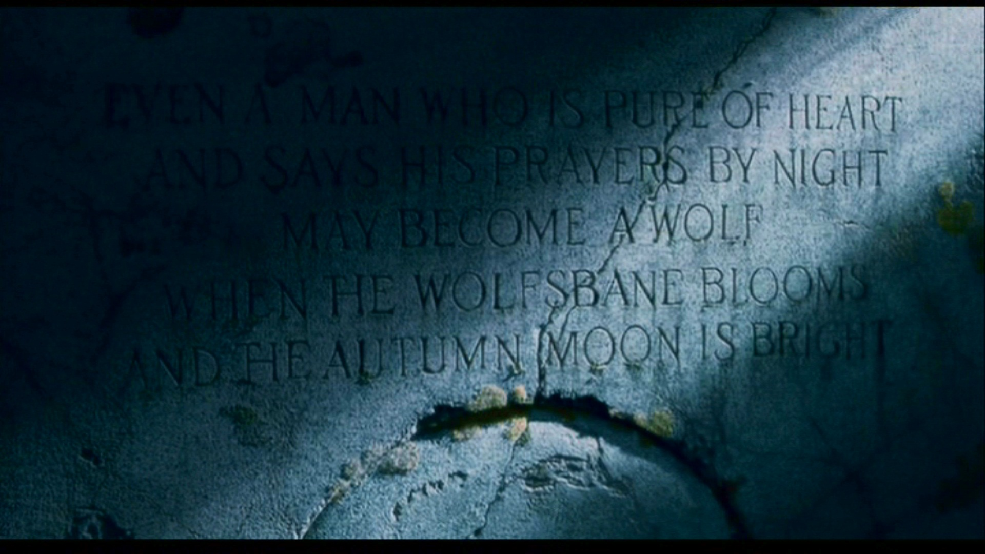 Movie - Wolfman  Wallpaper