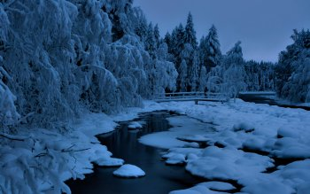 Earth - Winter Wallpapers and Backgrounds ID : 124094