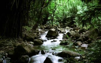 Earth - Stream Wallpapers and Backgrounds ID : 12574