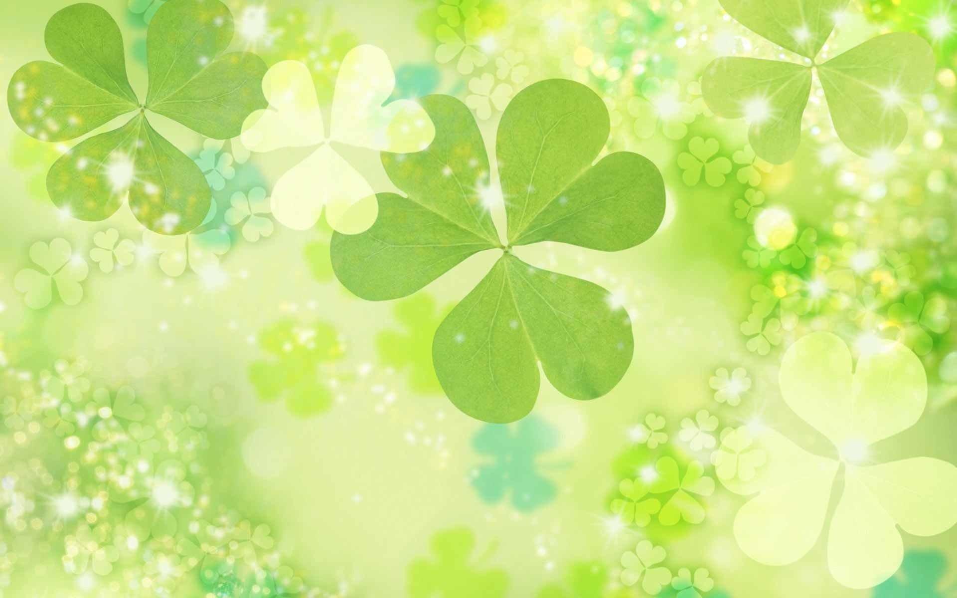Feriados - Dia de São Patrício  Verde Trevo Papel de Parede