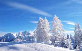 Earth - Winter Wallpapers and Backgrounds ID : 13216
