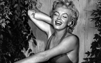 Celebrity - Marilyn Monroe Wallpapers and Backgrounds ID : 133778