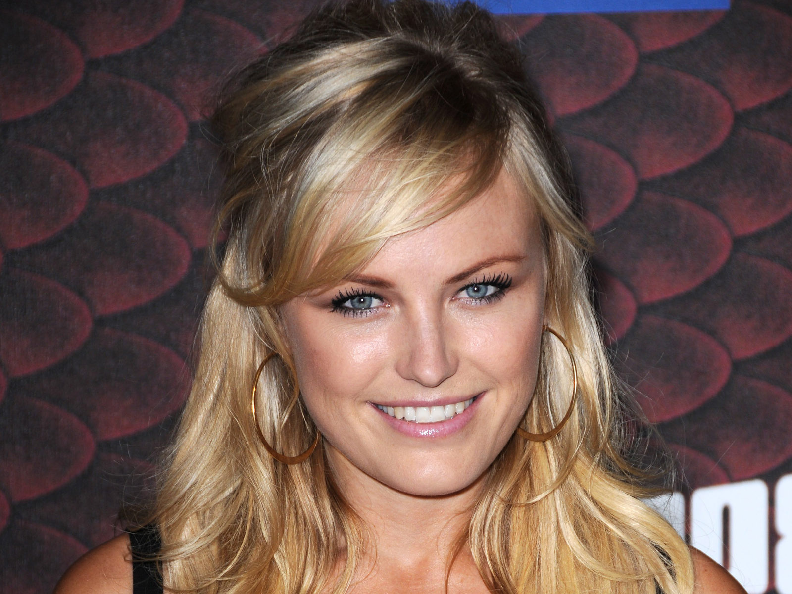 Celebrity - Malin Akerman  Wallpaper