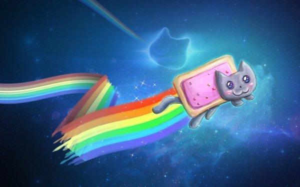 Humor Nyan Cat Rainbow HD Wallpaper | Background Image
