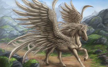 Fantasy - Pegasus Wallpapers and Backgrounds ID : 152664