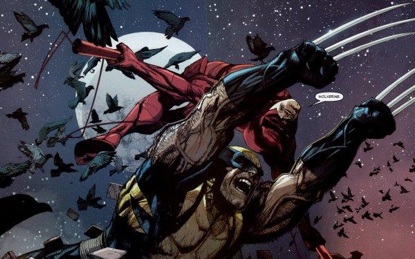 Comics Marvel Comics Daredevil Wolverine Fondo de pantalla HD | Fondo de Escritorio