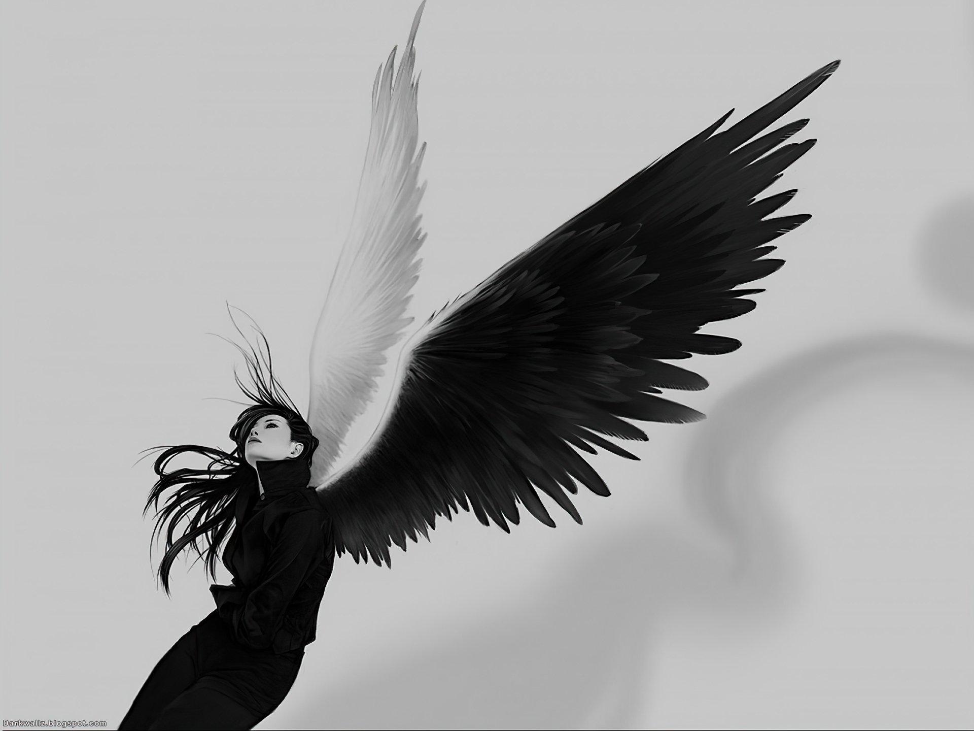 Dark - Angel  Dark Wallpaper