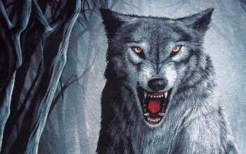 Djur - Wolf Wallpapers and Backgrounds ID : 154704