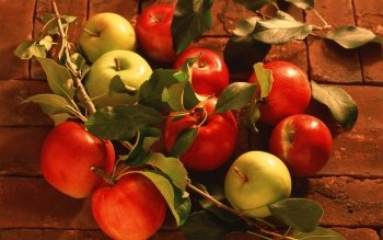 Alimento - Apple Wallpapers and Backgrounds ID : 155486