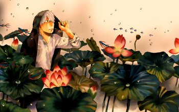 Anime - Mushishi Wallpapers and Backgrounds ID : 156058