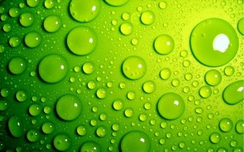 Abstract - Green Wallpapers and Backgrounds ID : 160814