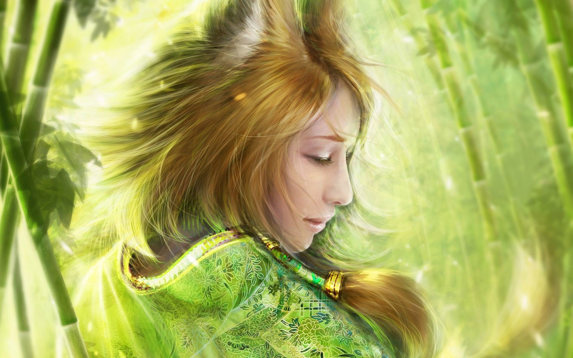 Wallpapers ID:161488
