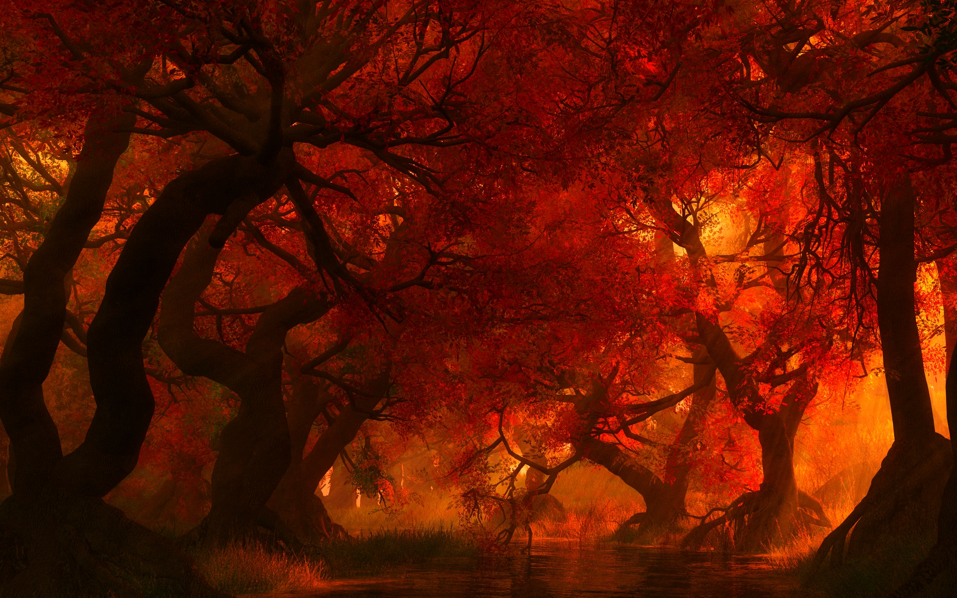 Компьютерная Графика - Природа  Лес солнце Mystic река Привидение Woman Behind Дерево Обои