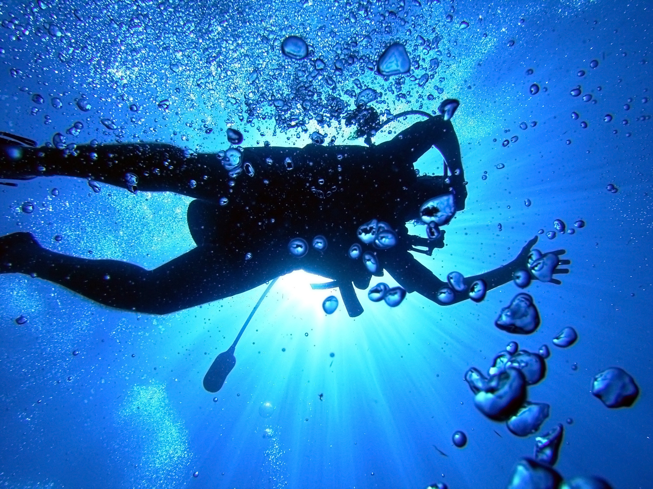 diving full hd wallpaper and background image | 2592x1944 | id:165146